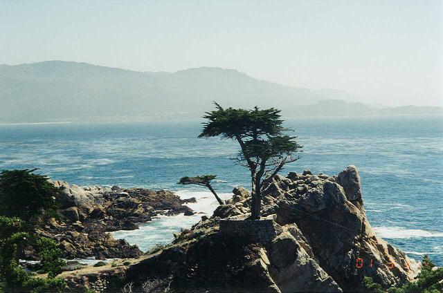 17-mile_Drive_009_scanned_03312001