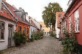 Aarhus_316_07262019
