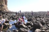 Abalone_Cove_043_02202016 - Now amongst the many people at the tide pools checking out the sea life