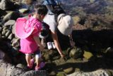 Abalone_Cove_068_02202016 - Julie and Tahia checking out some of the sea life in the tide pools here