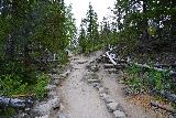 Adams_Falls_012_07282020 - The East Inlet Trail continued to climb as the path was lined with rocks
