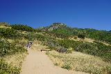 Adams_Falls_018_08092020 - Looking ahead towards a rest bench after the 10th switchback on the initial climb up the Adams Canyon Trail. Note that this was the deviation point for the detour to the Adams Canyon Lower Falls