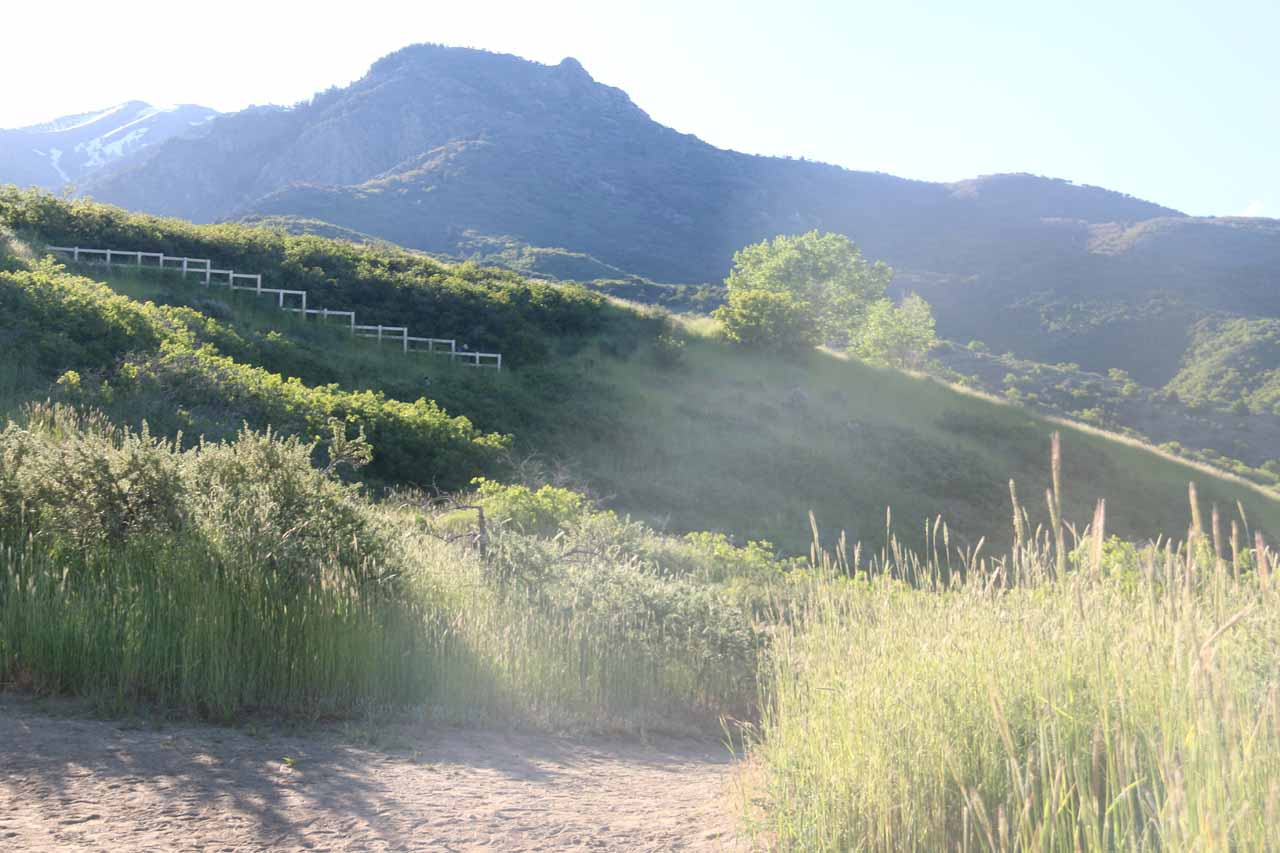 I climbed high enough at this point to face the morning sun while I still had some more switchbacks to climb up ahead