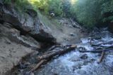 Adams_Falls_060_05272017 - This was one eroded part of the Adams Falls hike where people had set up deadfall logs to help keep the feet dry while clinging to the eroded embankments