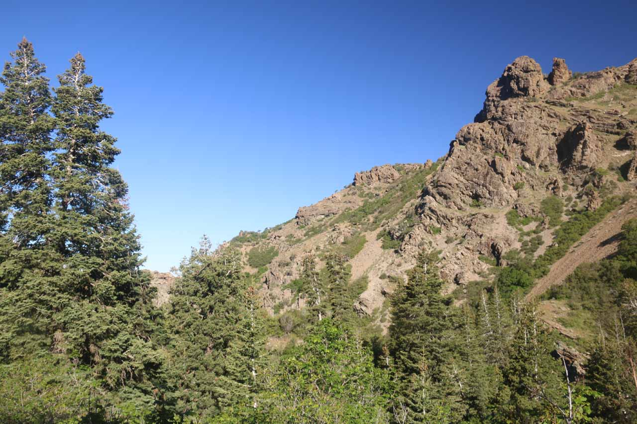 At this point in the Adams Falls hike, I got high enough to start noticing the interesting cliffs
