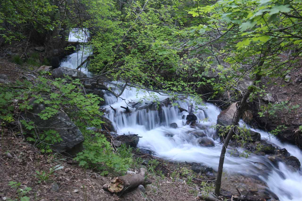 This was one of the attractive cascades on North Holmes Creek alongside the Adams Canyon Trail