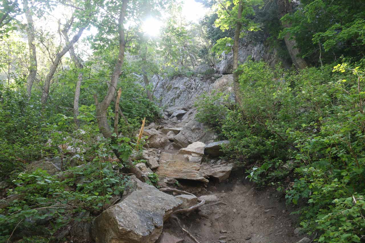 This was another section of steep hand-over-feet scrambling on the Adams Canyon Trail