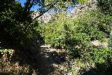 Adams_Falls_138_08092020 - Ascending on the famliar Adams Canyon Trail, but at least I was getting the benefit of shade during my August 2020 visit