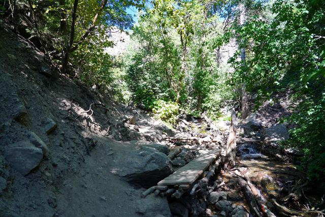 Adams_Falls_140_08092020 - Approaching a footbridge during my August 2020 hike that definitely wasn't there during my late May 2017 hike