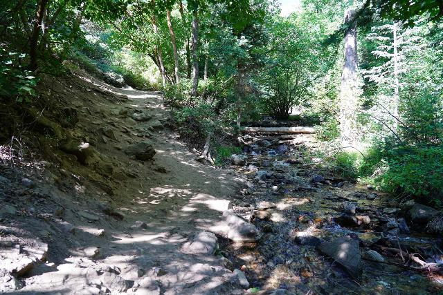 Adams_Falls_144_08092020 - North Fork Holmes Creek was significantly lower and causing less trail erosion on the Adams Canyon Trail so I had a much easier time doing this hike on my second time around in the Summer of 2020