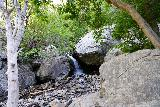 Adams_Falls_163_08092020 - Approaching a cascade on North Fork Holmes Creek next to a giant boulder along the Adams Canyon Trail as seen in mid-August 2020