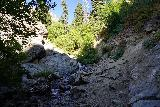 Adams_Falls_169_08092020 - Once eroded and overflowing sections of creek in late May 2017 were now much easier to deal with in mid-August 2020 en route to Adams Falls