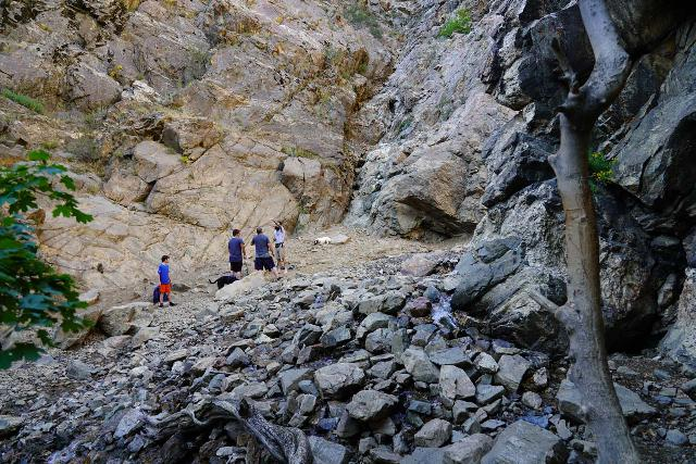 Adams_Falls_183_08092020 - Another look at the last crossing of North Fork Holmes Creek in mid-August 2020 conditions, where this crossing was a lot more trivial than it was three years prior to this