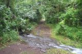 Afareaitu_Waterfalls_014_20121219 - The stream crossing that turned me back yesterday