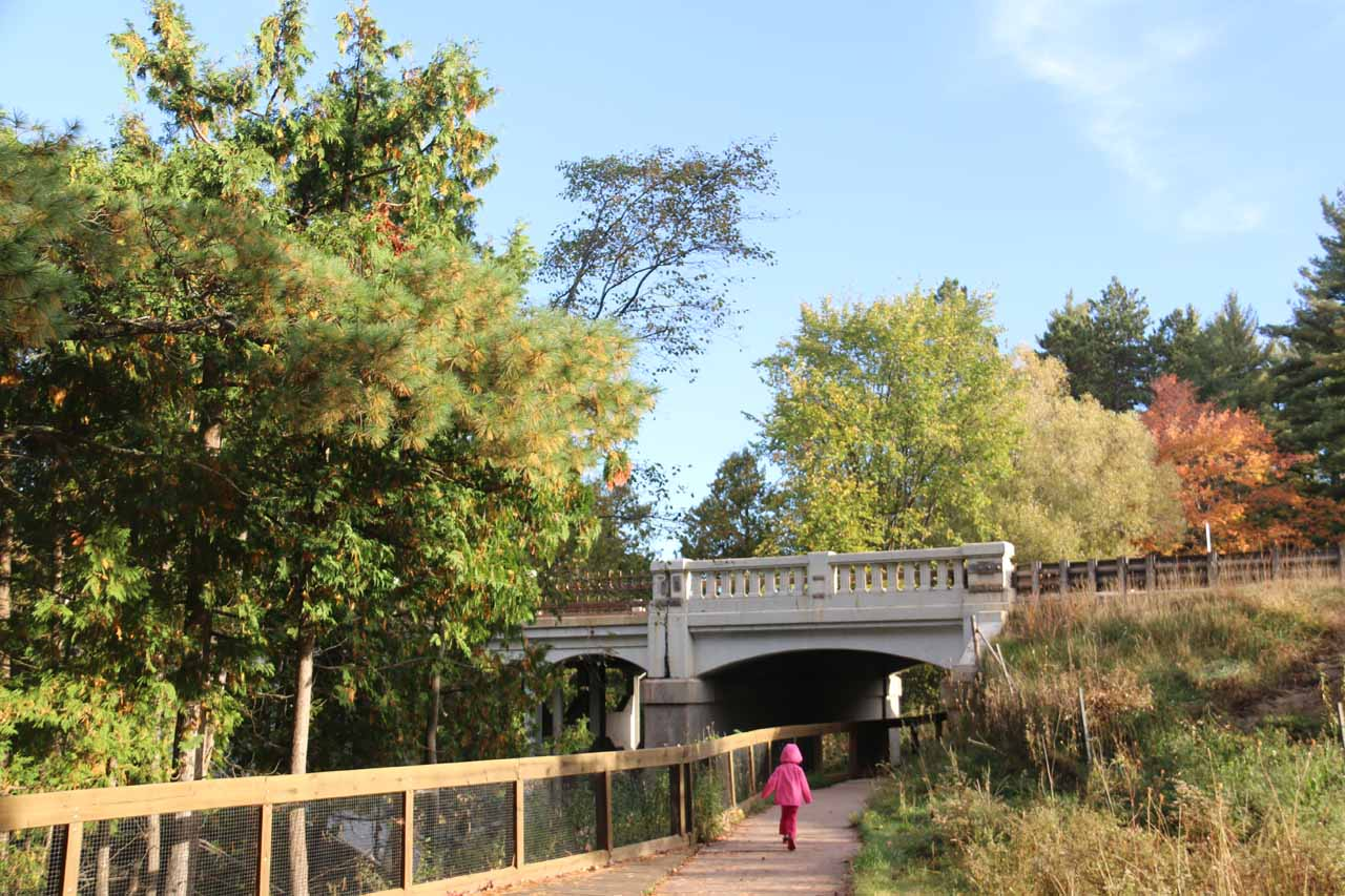 Tahia on the short trail leading under the road bridge for Hwy 28 then continuing on towards Agate Falls