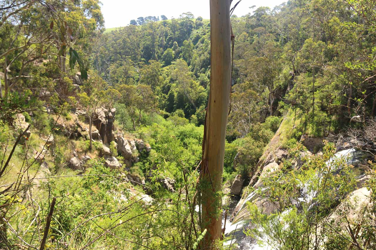 Looking down across Agnes Falls into the deep ravine carved out by the Agnes River