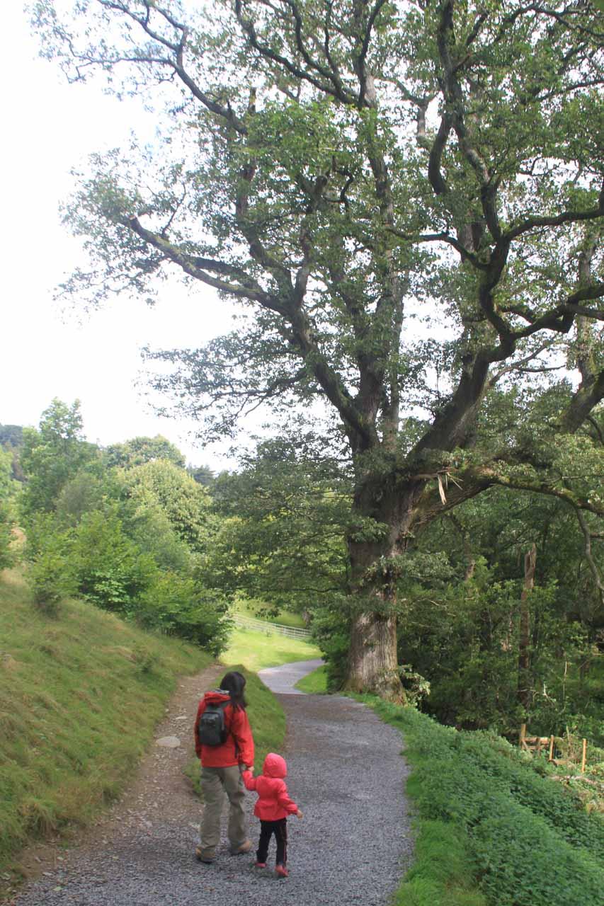 Julie and Tahia on the loop trail