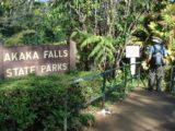 Akaka_Falls_001_jx_03092007 - Starting the short loop walk
