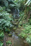 Akaka_Falls_005_03092007