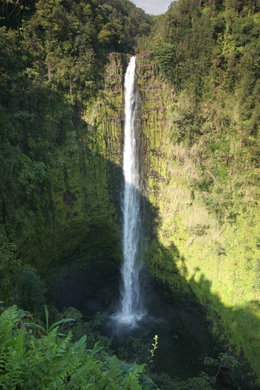 Sunny view of Akaka Falls
