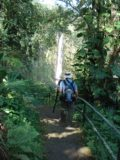 Akaka_Falls_016_jx_03092007 - Akaka Falls just up ahead