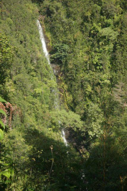 Akaka_Falls_036_03092007 - Partial profile view of Kahuna Falls