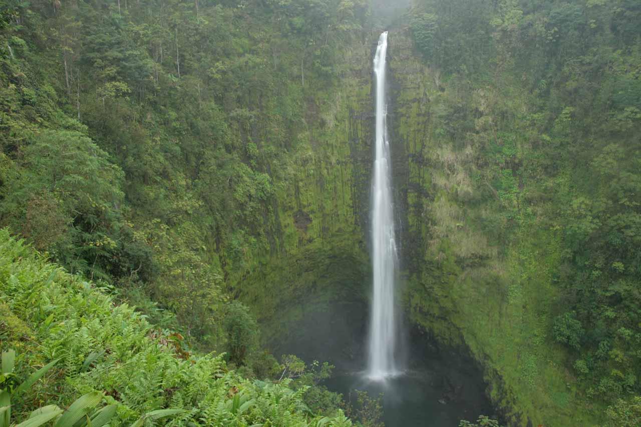 A Big Island Waterfall