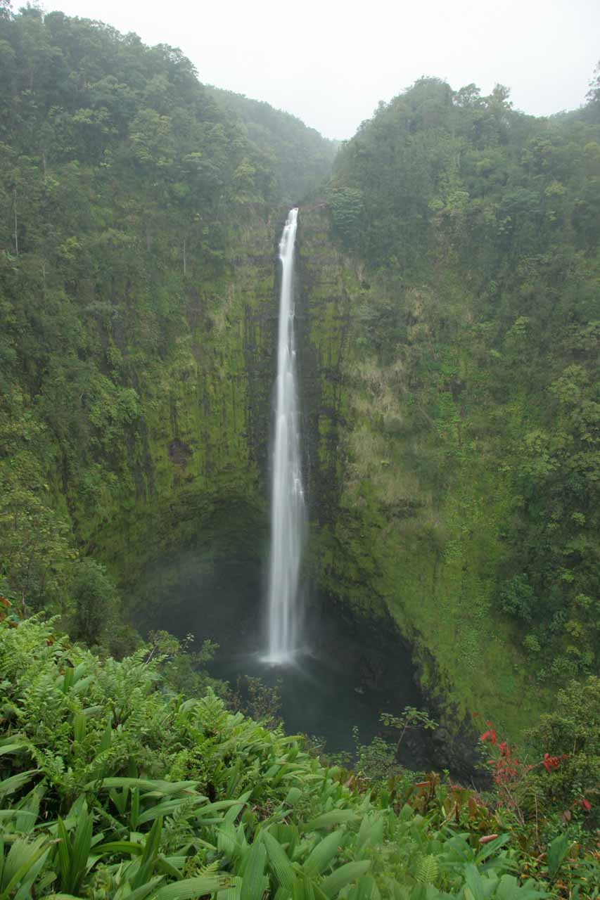 Another look at the gorgeous Akaka Falls
