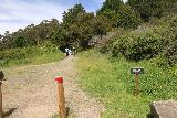 Alamere_Falls_006_04192019 - Starting on the hike to Alamere Falls during my April 2019 visit