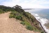 Alamere_Falls_028_04192019 - Looking back over the sea cliffs alongside the trail to Alamere Falls during my April 2019 visit