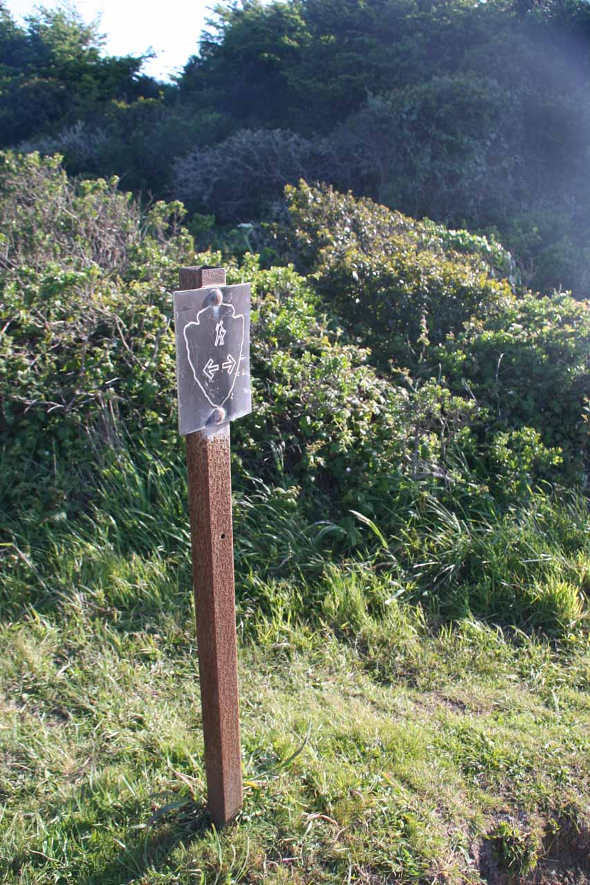 When you see this sign, look for the Alamere Falls trail junction coming soon