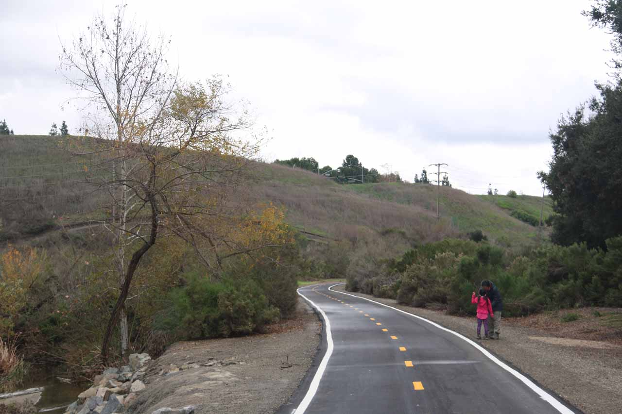 At this part of the paved trail, the vegetation started to conceal Aliso Creek, but soon thereafter was the turnoff leading to Aliso Viejo Falls