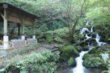 Amedaki_099_10232016