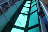 Amedee_155_11302015 - A lot of fish swimming around the glass-bottomed boat probably due to bread feeding by the guides