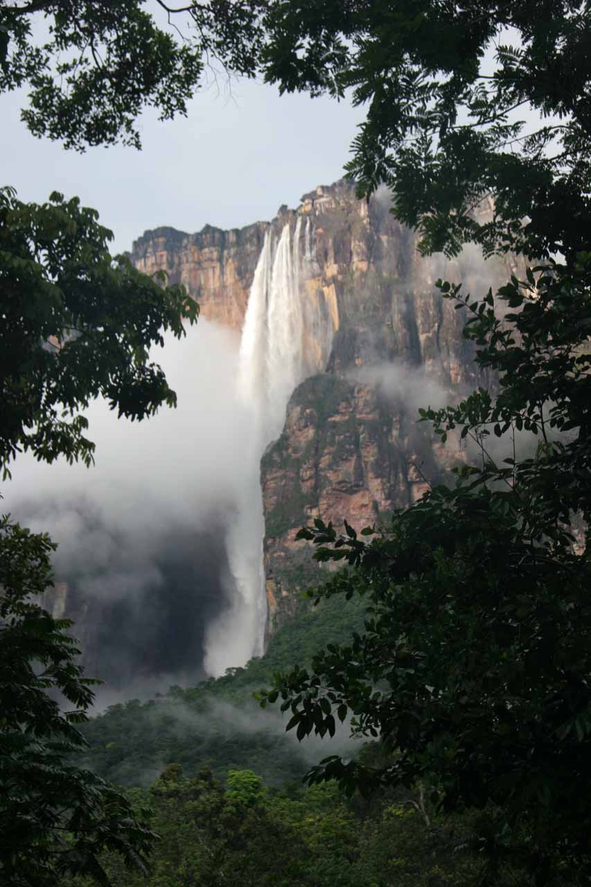 Angel Falls in a more swollen state framed between trees