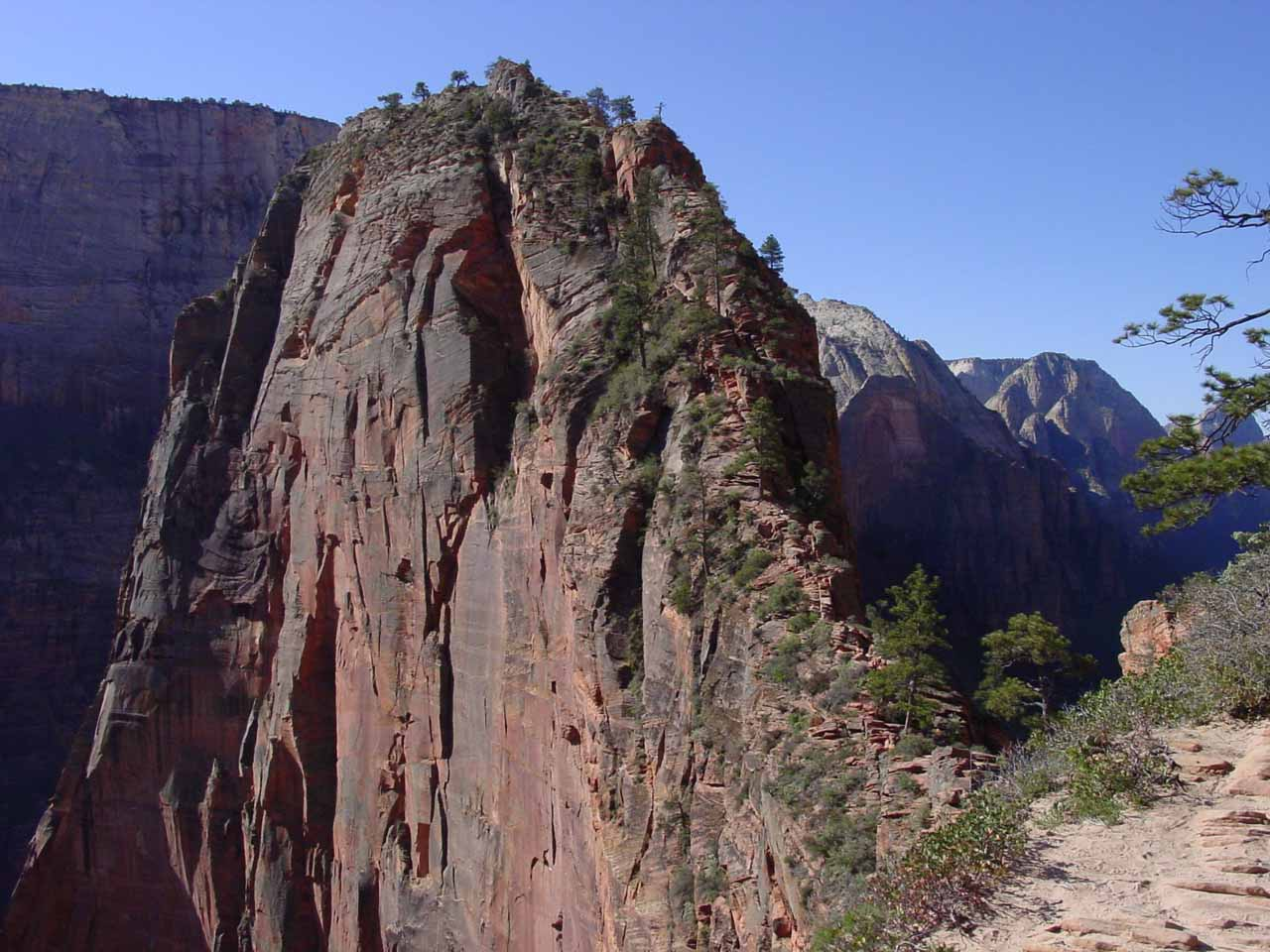 The knife-like ridge of Angels Landing from Scouts Lookout
