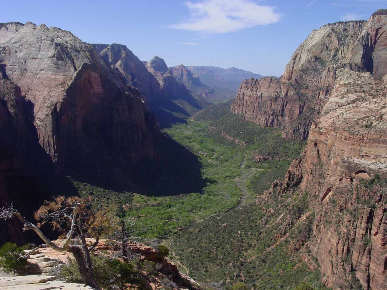 Looking into Zion Canyon from the summit of Angels Landing