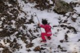 Angelus_Oaks_064_03072015 - Tahia playing in the patch of snow next to Cold Creek Falls