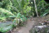 Anse_La_Raye_Falls_005_11282008 - The trail follows the Anse La Raye Stream