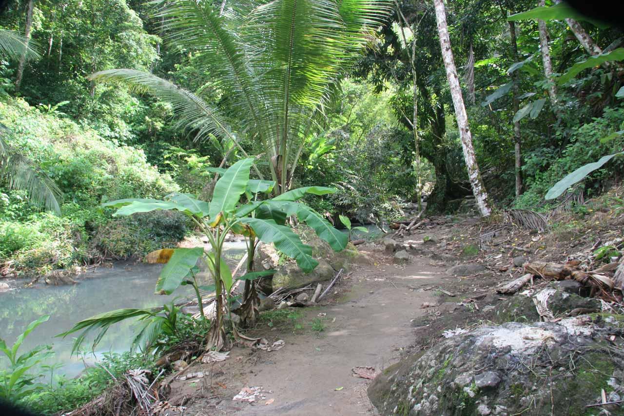 The trail follows the stream