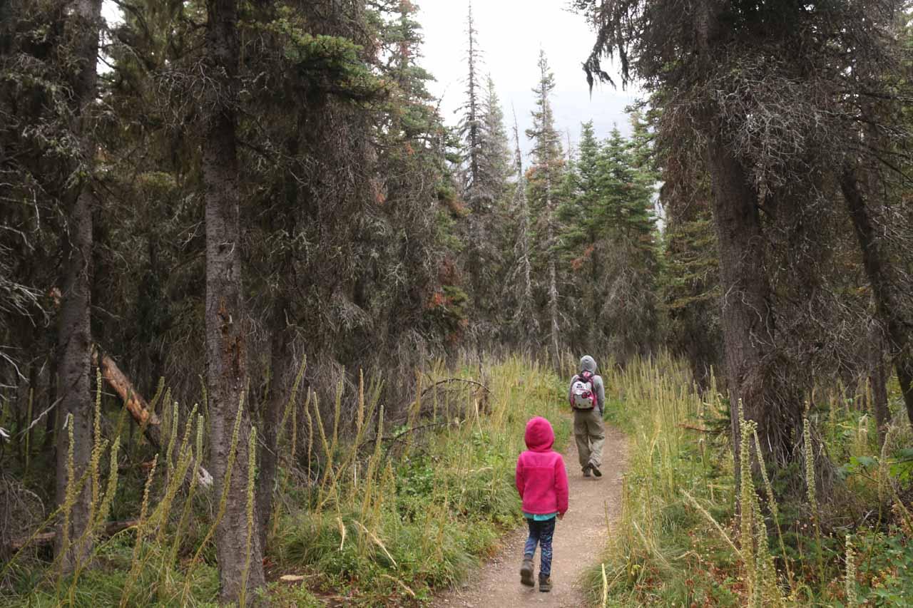 Julie and Tahia on the Appistoki Falls Trail