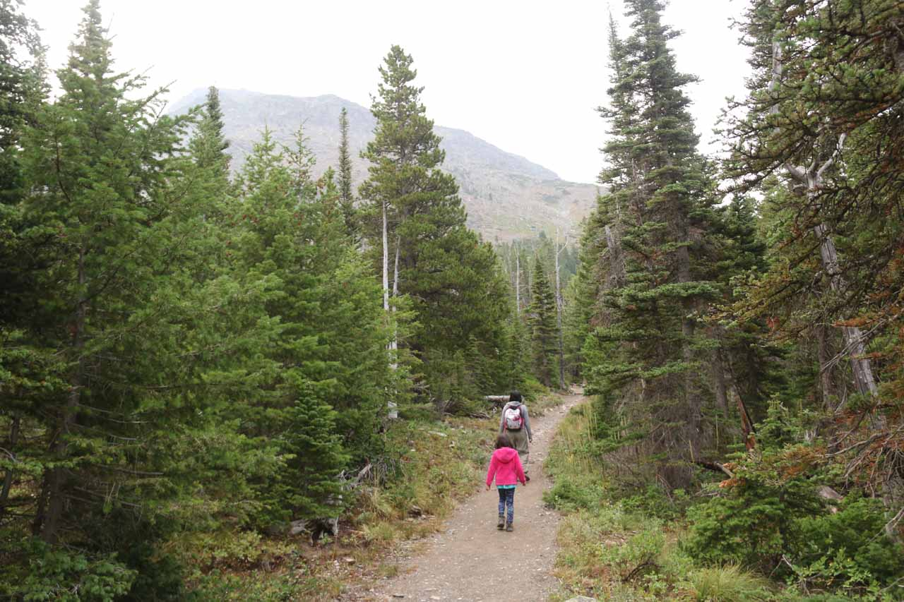 Julie and Tahia continuing along the Appistoki Falls Trail as it continued its gentle ascent