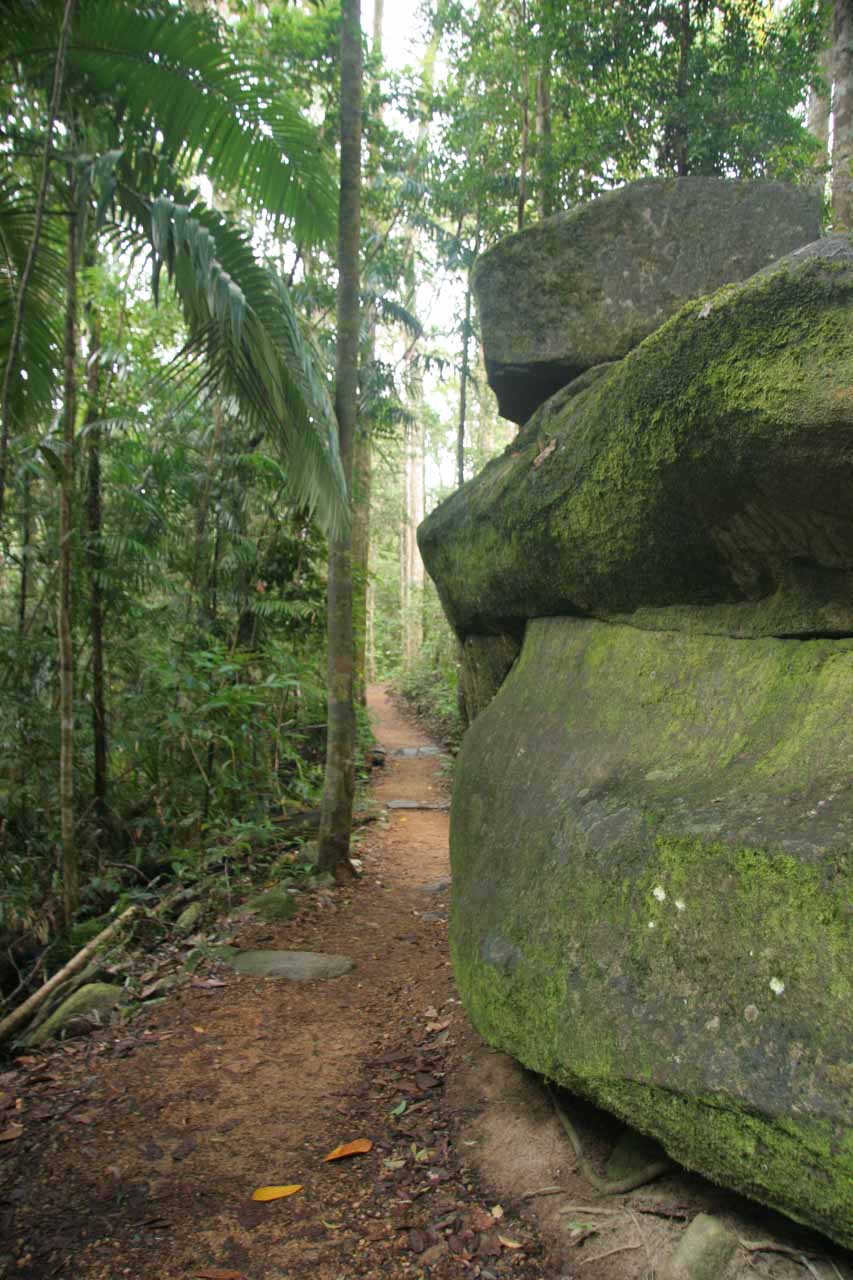 Hiking past some big boulders along the track