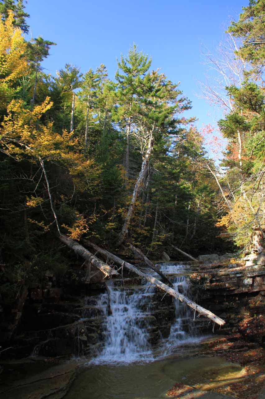 The first waterfall we saw on the Bemis Brook Trail was Bemis Falls