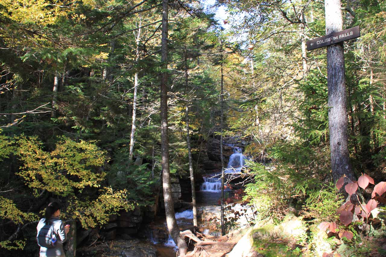 Approaching Coliseum Falls, which was the second of the waterfalls on the Bemis Brook