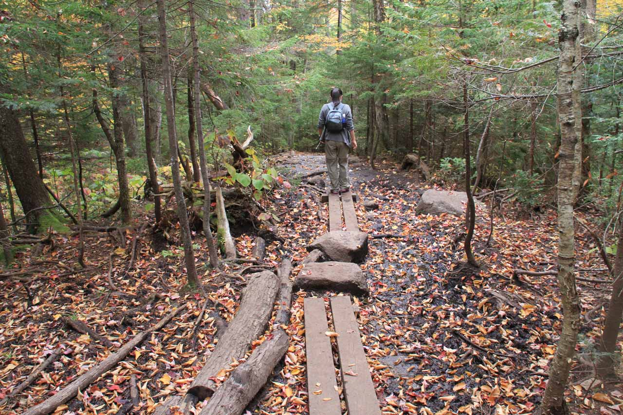 There were some muddy spots on the trail, but some of those areas were easily traversed by boardwalks like this