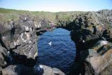 Arnarstapi_017_06232007 - Another big sea arch