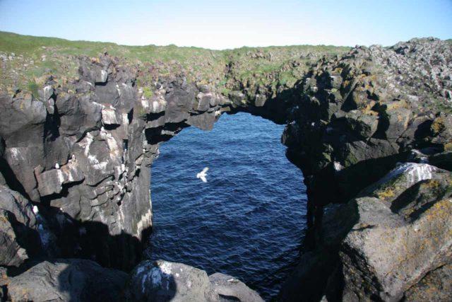 Arnarstapi_017_06232007 - Roughly 36km east and then south from Ólafsvík were the sea arches at Arnarstapi