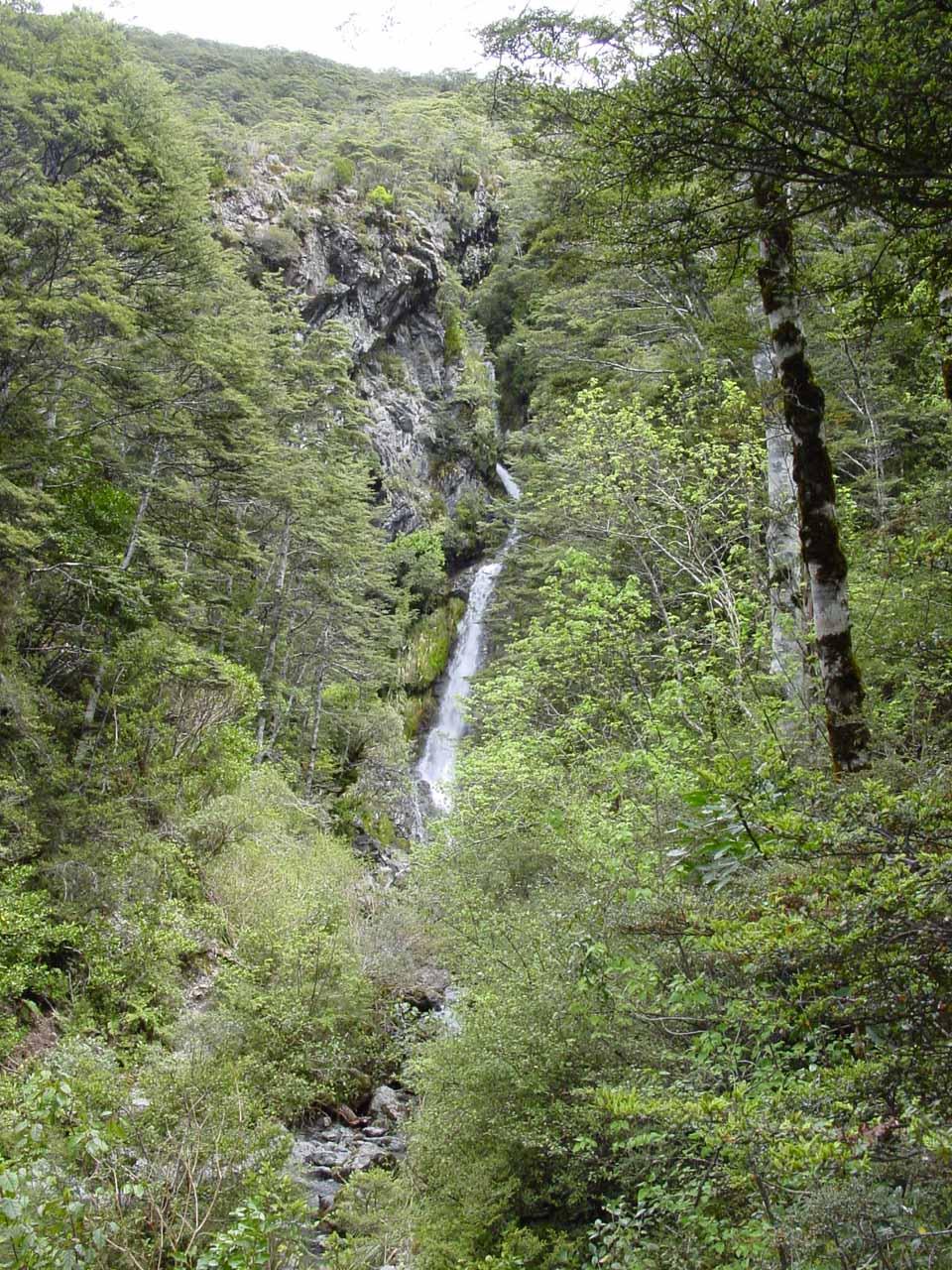 Approaching Avalanche Creek Falls