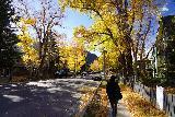 Aspen_003_10182020 - Julie walking along East Cooper Avenue in Aspen as we were walking towards our dinner spot